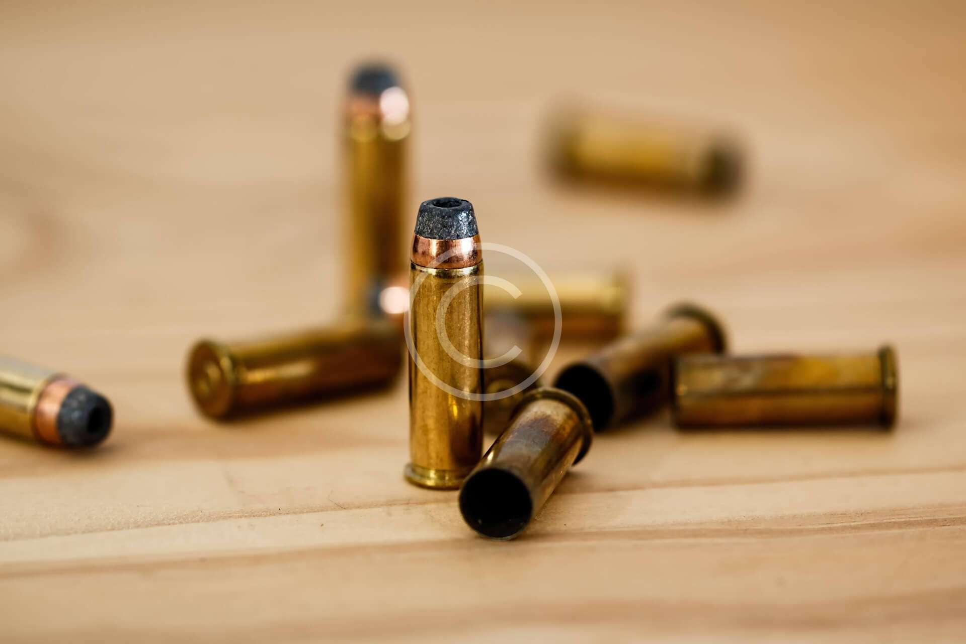 Moose Antler Shotguns Slugs
